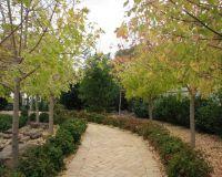 Pathway_of_Sensations